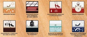 evaflex iconografia copia